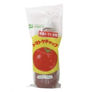 創健社 トマトケチャップ 300g|kenko-ex