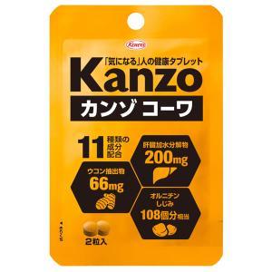 【ゆうパケット配送対象】興和 カンゾコーワ粒 2粒(ポスト投函 追跡ありメール便)|kenko-ex