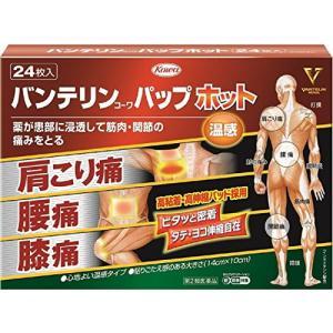 興和新薬 バンテリンコーワパップホット 24枚【SM】(第2類医薬品)