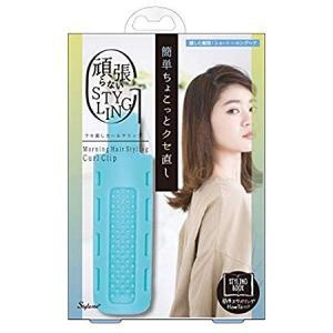 [ラッキーウィンク]クセ直しカールクリップ(ヘアアレンジ ヘアスタイル スタイリング 髪 まとめ髪) kenko-ex