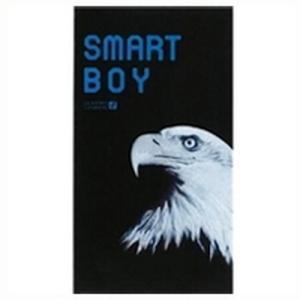 【ゆうメール便!送料80円】オカモトスマートボーイ(SMART BOY)スーパーフィット12個入り【MK】