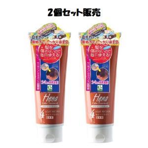 「2個セット販売」テンスター ヘナ カラートリートメント ライトブラウン 250g 「おまけつき」 kenko-okoku