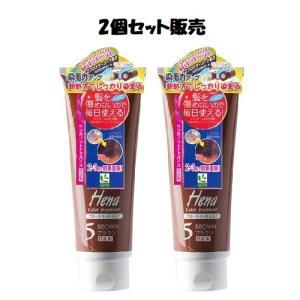 「2個セット販売」テンスター ヘナ カラートリートメント ブラウン 250g 「おまけつき」 kenko-okoku