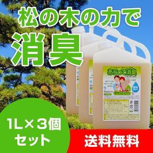 あらって消臭 1L×3個 洗濯 あらって消臭 送料無料|kenko-store-tk