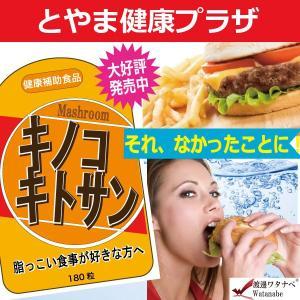 キノコキトサンダイエット|kenkotoyama
