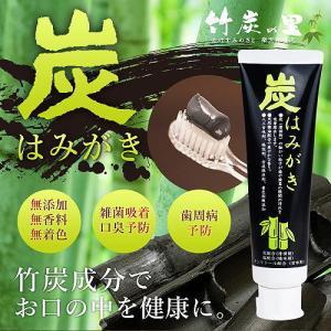 炭はみがき 100g×2本 ф 炭の吸着成分が歯垢やニオイを吸着&除去 竹炭の里|kenkou-master