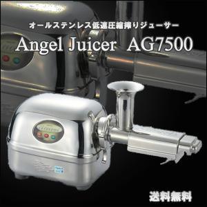 スロージューサー エンジェルジューサー AG7500  ANGEL公式 コールドプレス 低速ジューサー 人参ジュースの商品画像|ナビ