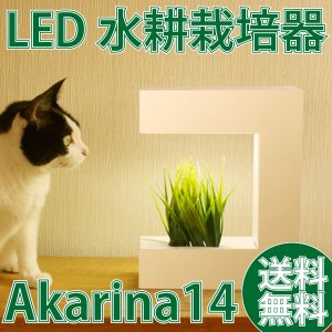 <Akarina14/LED水耕栽培キット> お家で簡単に野菜栽培♪ オシャレなインテリアにもなる水...