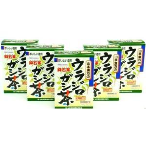 山本漢方製薬(株) [5個セット]ウラジロガシ...の関連商品3