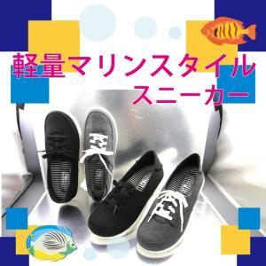 スリッポン レディース 靴 ふかふか 4E 可愛い 歩きやすい カジュアル カジュアルシューズ 婦人靴 199|kenkoudoudesuka