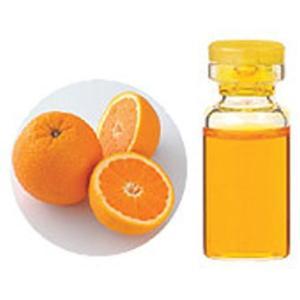 オレンジスイート 10ml エッセンシャルオイル 生活の木 |kenkousupport