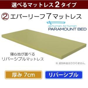 介護ベッド 介護用ベッド 楽匠Z 3モーション...の詳細画像5
