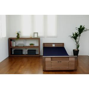 介護ベッド プラッツ 超低床電動ベッド ラフィオ(Rafio) 2モーター ポジショニングベッド 木製宮付きボード|kenkul|04