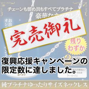 プレゼント レディース 女性 純プラチナゆったりサイズネックレス【45cm】|kensei-online