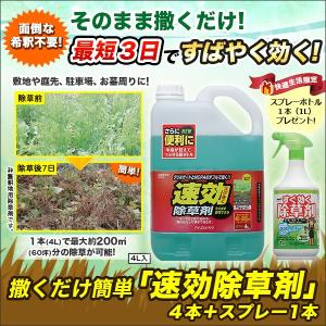 草抜き 草むしり スプレー「撒くだけ簡単 速効除草剤」4本+スプレー1本|kensei-online