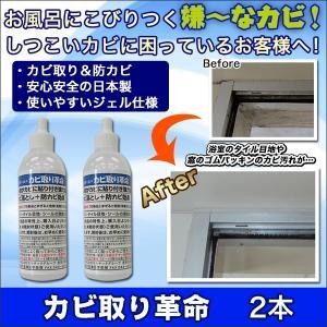 掃除 お風呂 サッシ「カビ取り革命」2本セット|kensei-online