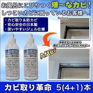 掃除 お風呂 サッシ「カビ取り革命」5(4+1)セット|kensei-online