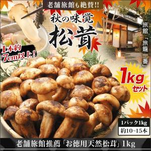松茸 マツタケ まつたけ 老舗旅館推薦「お徳用天然松茸」1kgセット