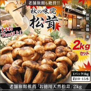 松茸 マツタケ まつたけ 老舗旅館推薦「お徳用天然松茸」2kgセット