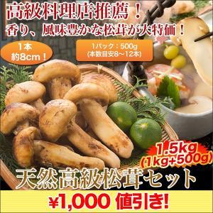 松茸 マツタケ まつたけ日本料理店ご推薦「天然高級松茸 」1.5kgセット|kensei-online
