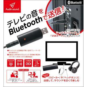 人気商品Audin sound BLUETOOTH送信機 TM-06|kenseido