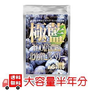 北欧産ビルベリー 【大容量半年分】 100倍濃縮 送料無料 ...