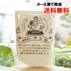 「大自然のめぐみ」小麦粉(中力)【 メール便の場合、送料無料】