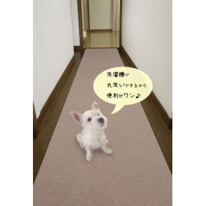 ペット用廊下敷マット    DX600【デラックス】600mm幅×900mm・2枚入り《送料無料/ポイント10倍》|kenzai-wanipark