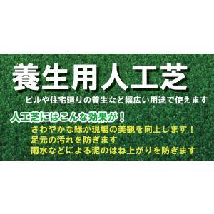 簡単設置★日本製の人工芝!91cm×25M(ロールタイプ)【送料無料】|kenzai-wanipark|04