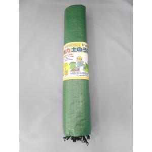 強力UV土のう 10枚入り 48cm×62cm ダークグリーン|kenzaisyounin