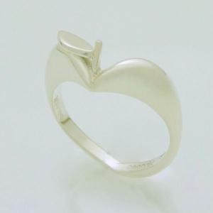 りんごの指輪|kenzihouse