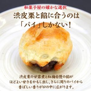 紅梅「安波栗」−1箱10個入りの上品なマロンパイ 1つの味を2色の個包装で包みました|kesennu-market|03