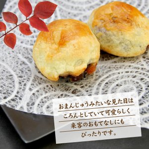 紅梅「安波栗」−1箱10個入りの上品なマロンパイ 1つの味を2色の個包装で包みました|kesennu-market|04