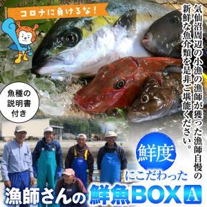 鮮度にこだわった 漁師さんの鮮魚BOX 約3kg程度 気仙沼産 鮮魚 魚介類 詰合せ 旬な季節の魚を漁師さんから直送【水揚げ次第出荷】 kesennu-market