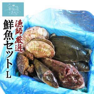 漁師さんの鮮魚セットL (4〜5kg目安) FishMarket38 気仙沼 唐桑 旬の鮮魚 お取り寄せ|kesennuma-san