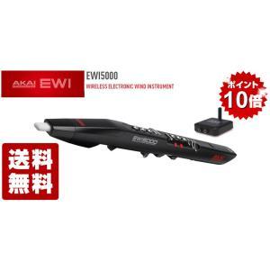 AKAI professional EWI5000 key