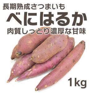 さつまいも 1kg 紅はるか べにはるか  生芋 茨城県産