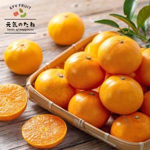 みかん せとか 究極の柑橘 ギフト せとかみかん 2kg 箱...