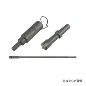 デンサン DENSAN 打込棒付ドリル CUD-30310C|kg-maido