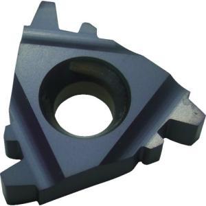 いよいよ人気ブランド NOGA Carmexねじ切り用チップ TRAPEZ 台形ねじ用 チップサイズ16×P2.0×30° 10個 売れ筋 16ER2TRBMA