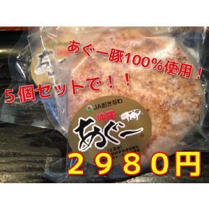 【あぐー豚100%】【肉汁たっぷり】【B級グルメ】あぐー豚手造りハンバーグ【5個セット】【1個150g】 kiccho-kiccho