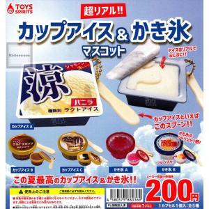 超リアル!カップアイス&かき氷マスコット 全5種セット (ガチャ ガシャ コンプリート)|kidsroom