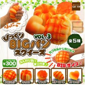 びっくり!BIGパンスクイーズ VOL.3 全5種セット (...
