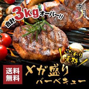 バーベキュー メガ盛りセット 牛カルビ 厚切りハラミ ホルモン 豚肉 鶏肉 合計3kg 送料無料 約10人前 季月・キサラギ