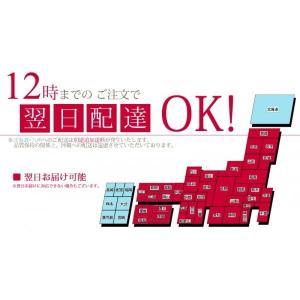 明日贈れる マイクロ胡蝶蘭|kihana-shop|05