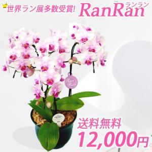 ランラン3本立|kihana-shop