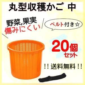 中サイズ 丸型 収穫かご 20個セット ベルト付き 野菜などを傷めにくい! オレンジ色 季節限定販売商品【6月〜2月まで】|kiitos-shop