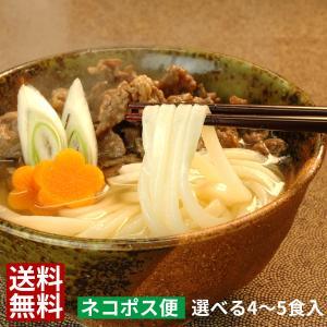 内容量 【並切麺 つゆ付セット】(4食入) ・並切 半生讃岐うどん(120g)×4 ・濃縮かけつゆ×...