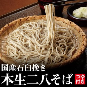 本生二八そばつゆ付セット【6食入】【SB-803S】|kijoanudon