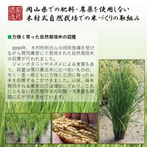 日本酒 木村式奇跡のお酒 日本万歳 純米大吟醸 雄町 40 1800ml|kikuchishuzo|04